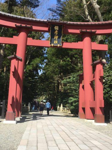 新潟県弥彦神社の観光まとめ