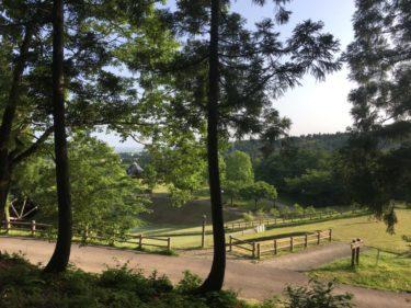新潟県田上ゆうゆうランドのキャンプ情報を紹介!日帰り温泉もある!